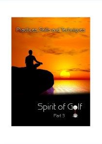 Practices, Skills, and Techniques – DVD Part 3